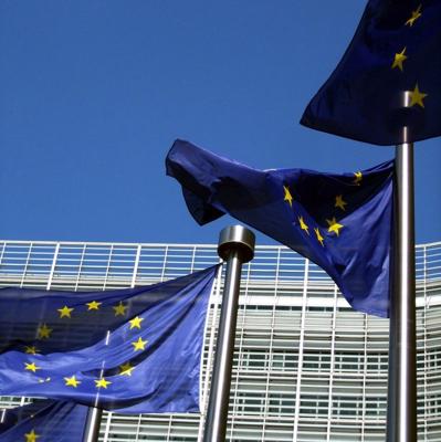 Photo: EU flags